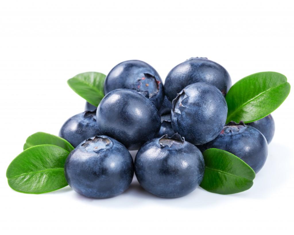 blåbär shutterstock_225443488